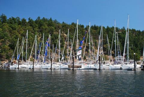 Jeanneau Owners Across the Country gather for Summer Sailstice Celebrations!